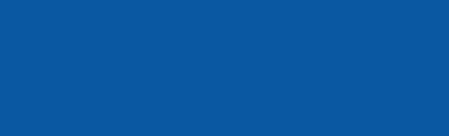 לוגו טכנוסו